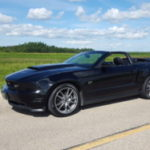 Profile picture of 2010 GT Convertible
